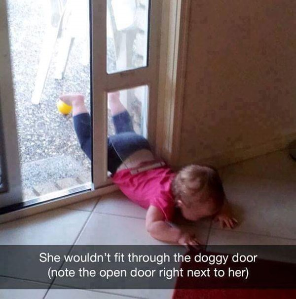why-kids-are-crying-doggy-door