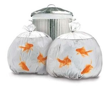 goldfish-bowl-trash-bags-bin