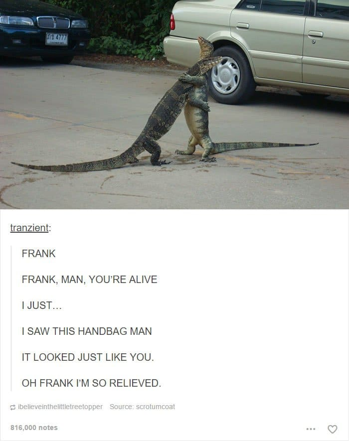 animal-tumblr-posts-lizard-hug