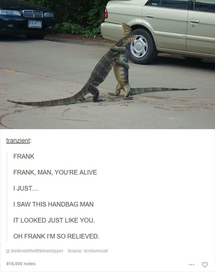 animal-tumblr-posts-lizard-hug
