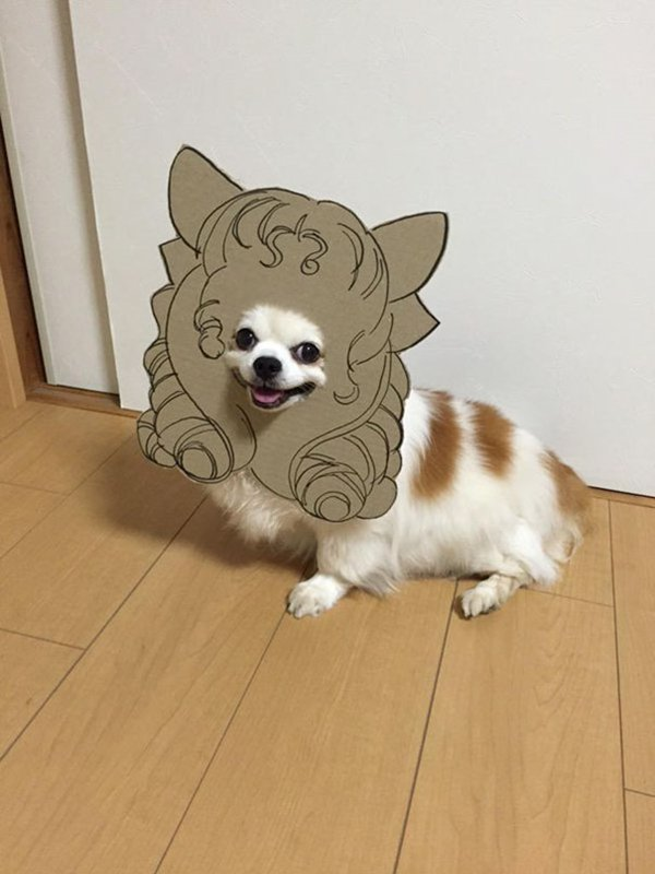 dog-costume-cardboard-cutouts-hairdo