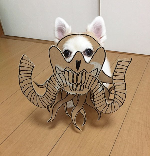 dog-costume-cardboard-cutouts-immortan-joe