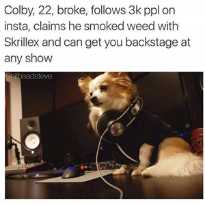 dogs-as-people-dj-colby