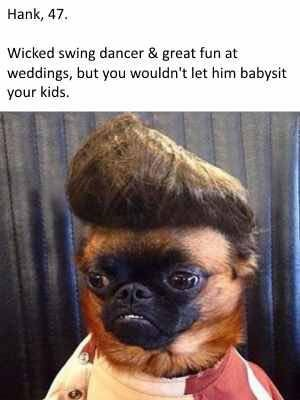 dogs-as-people-quiff-hank