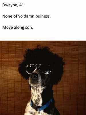 dogs-as-people-too-cool-dwayne