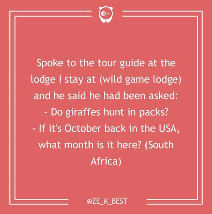 dumb-customer-questions-giraffes-hunt-in-packs