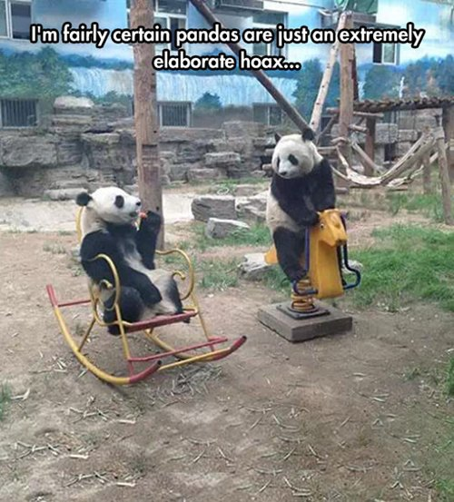 funny-animal-pictures-elaborate-hoax-pandas