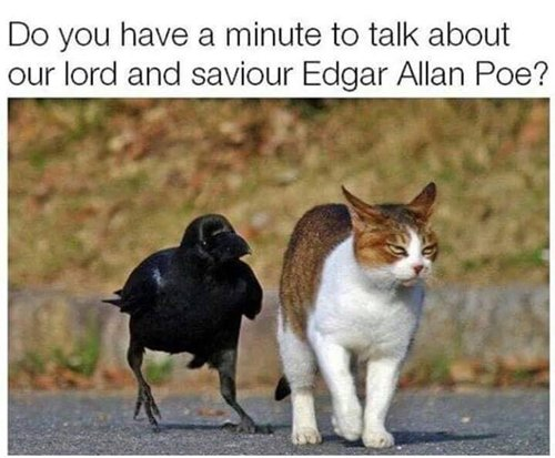 funny-animal-pictures-talk-about-edgar-allen-poe