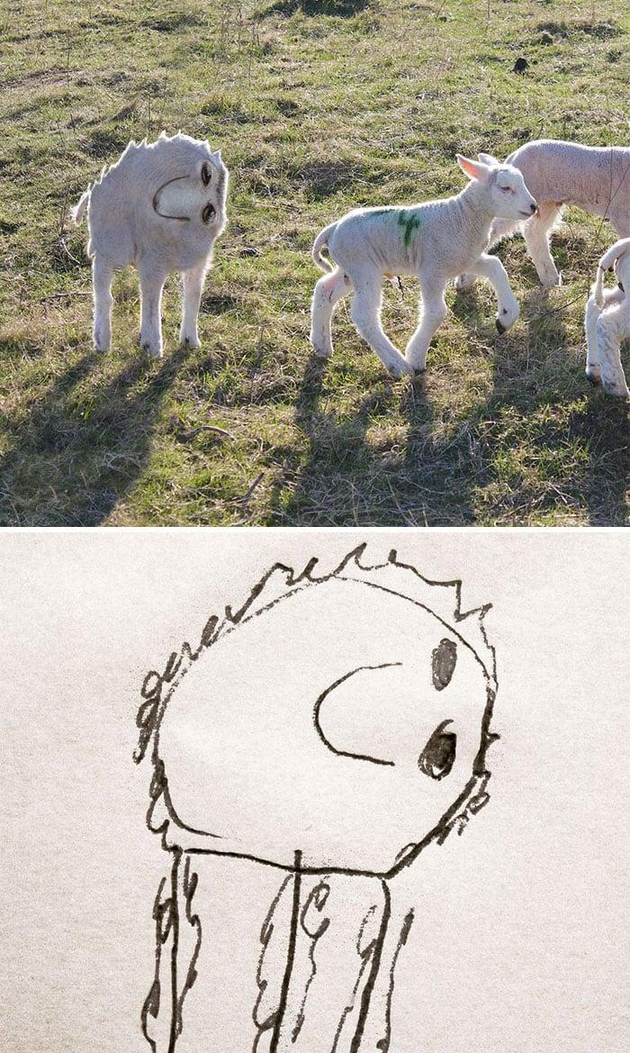 kid-drawings-realistic-lamb
