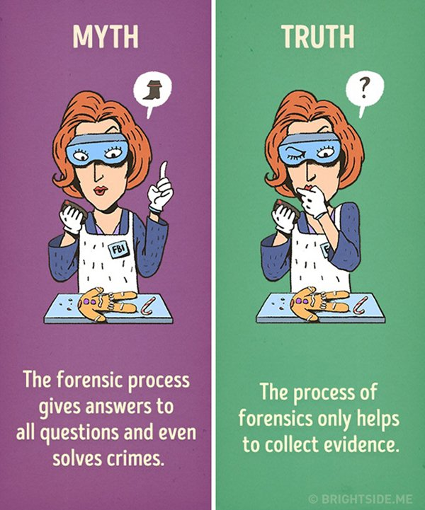 movies-myths-forensics