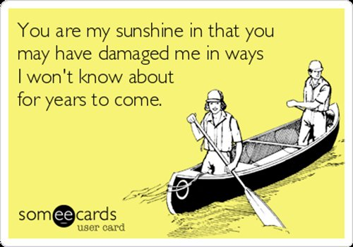 someecards-partner-sunshine-damaged