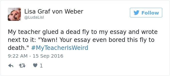teachers-are-weird-bored-fly