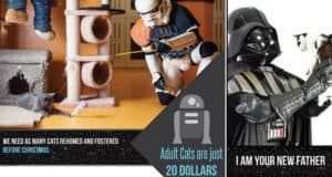 rspca-queensland-star-wars-inspired-campaign