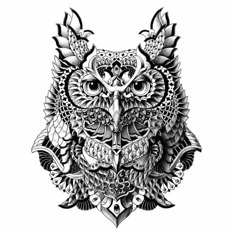 century-owl