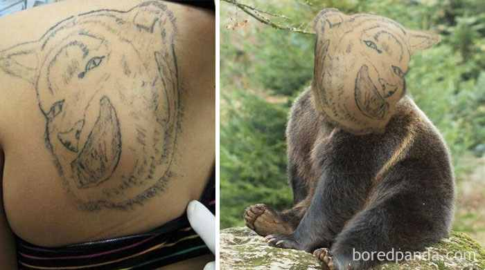 cheerful-bear-tattoo-face-swap