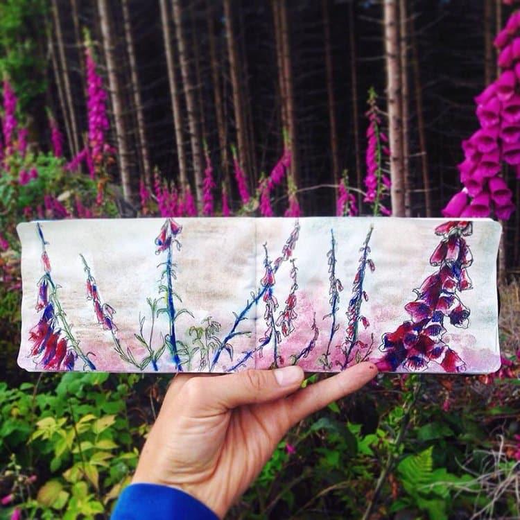forest-field-norway-sketch
