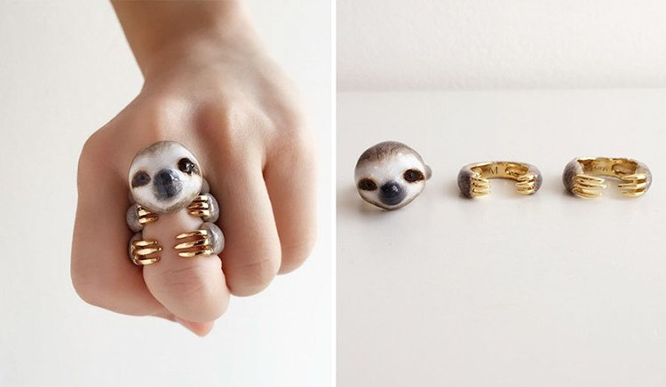 grey-sloth-animal-rings