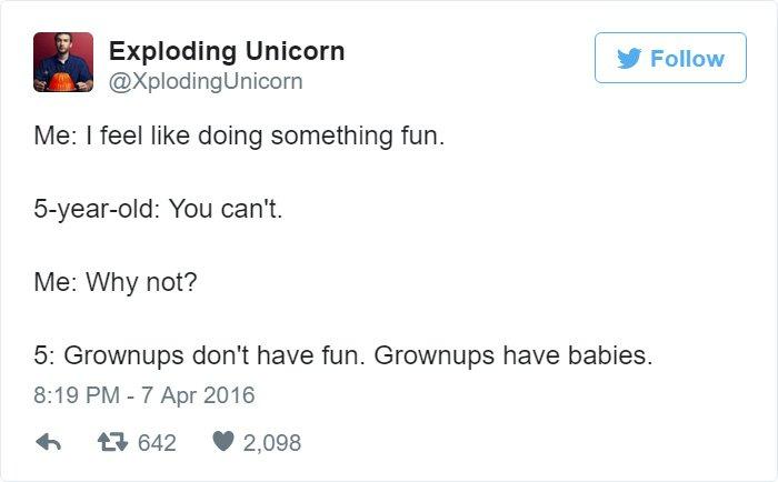 grown-ups-dont-have-fun-tweet