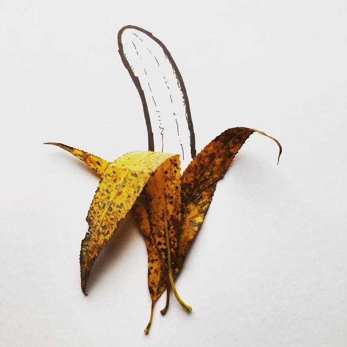 leaf-banana-illustration