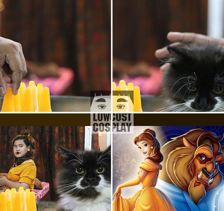 low-cost-cosplay-cat-beauty-beast