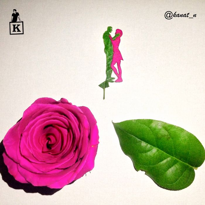 male-and-female-petal-and-leaf-drawing