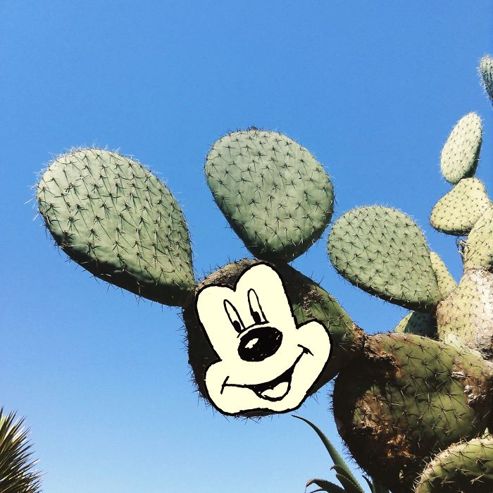 mickey-mouse-cactus-illustration