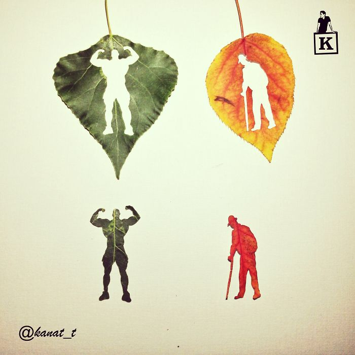 muscle-man-old-man-leaf-drawings