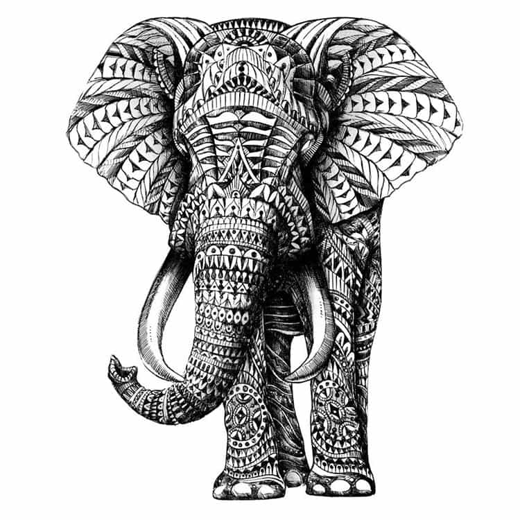 ornate-elephant-paisley-drawing