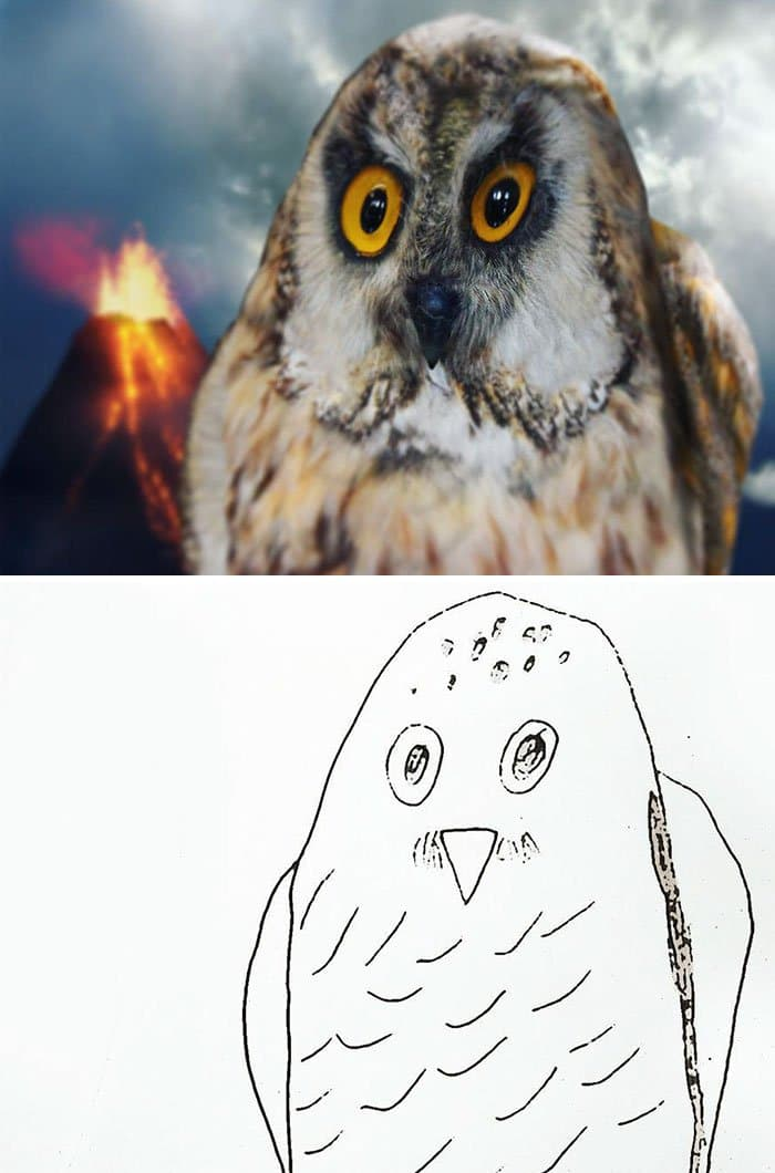 owl-kids-drawing-turned-into-reality