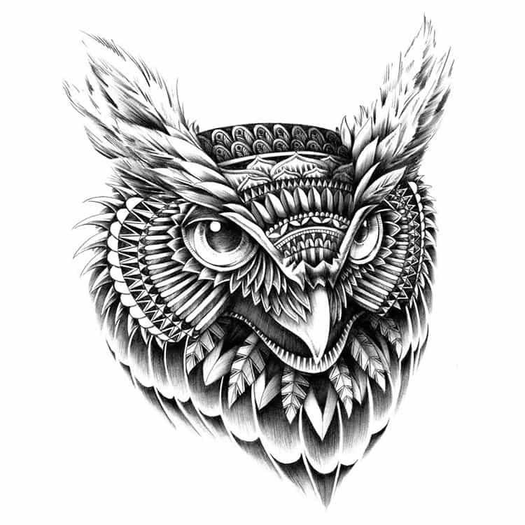 owl-portrait-paisley-drawing