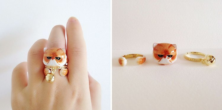 persian-cat-animal-rings