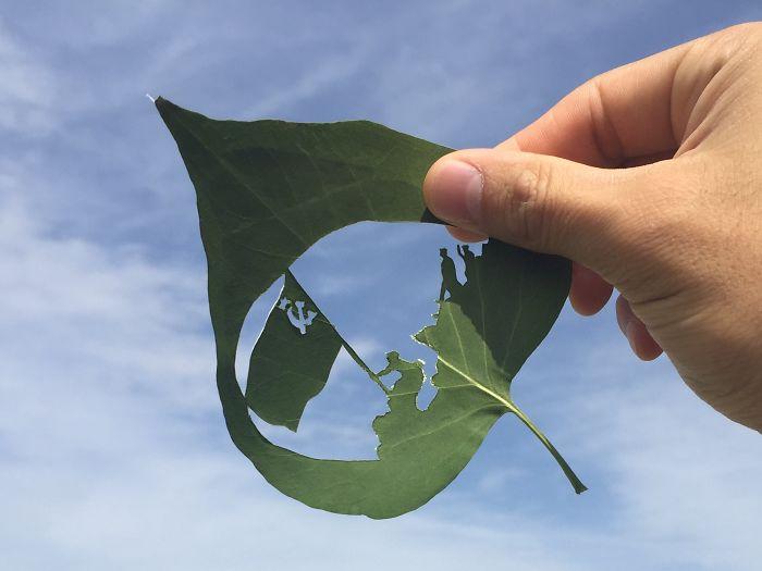 raising-flag-leaf-drawing