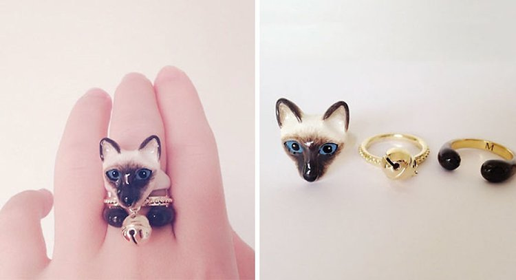 siam-cat-animal-rings