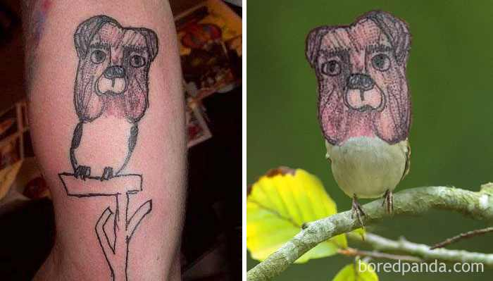 sparrow-dog-tattoo-face-swap