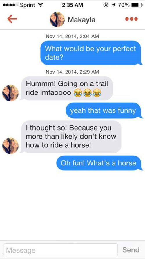 tinder-funnies-whats-a-horse