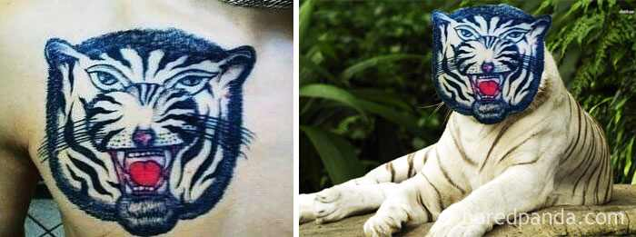 white-tiger-tattoo-face-swap