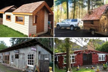 awesome-backyard-sheds
