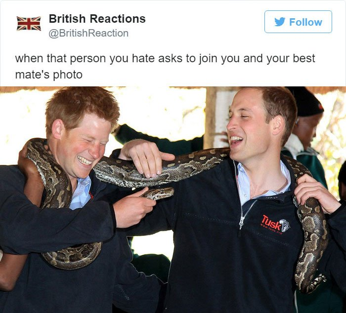 person-you-hate-join-photo-being-british-tweet