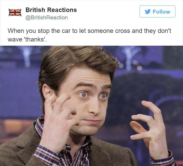 stop-the-car-to-let-cross-being-british-tweet