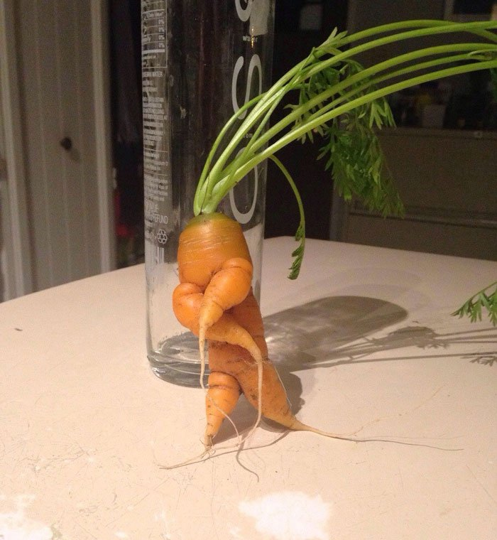 oddly-shaped-fruit-vegetables-dancing-carrot