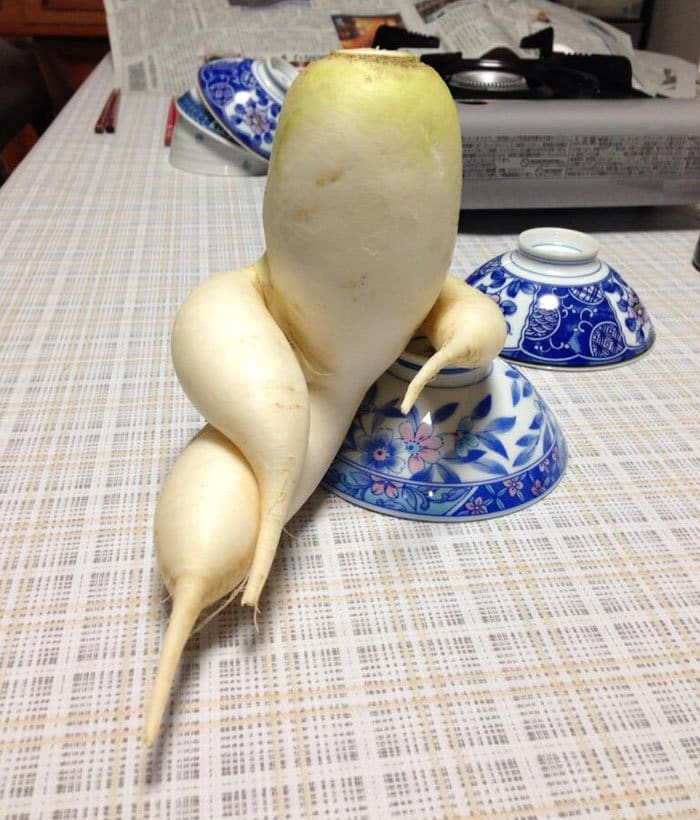 oddly-shaped-fruit-vegetables-draw-me-like-your-french-girls