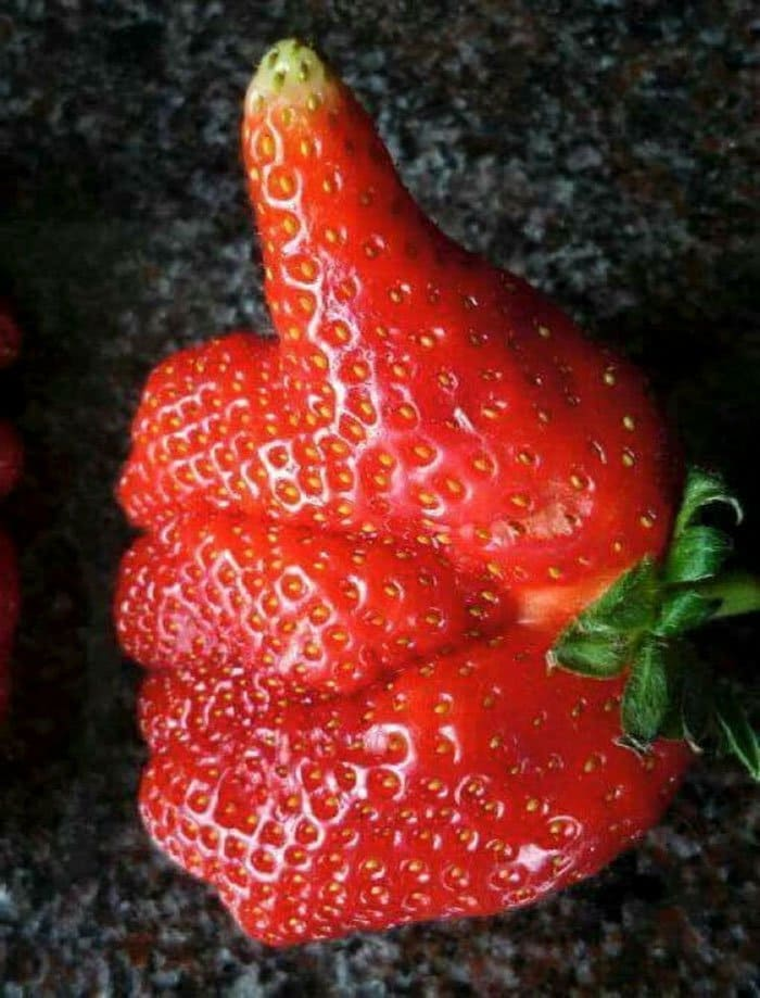 oddly-shaped-fruit-vegetables-thumbs-up-strawberry