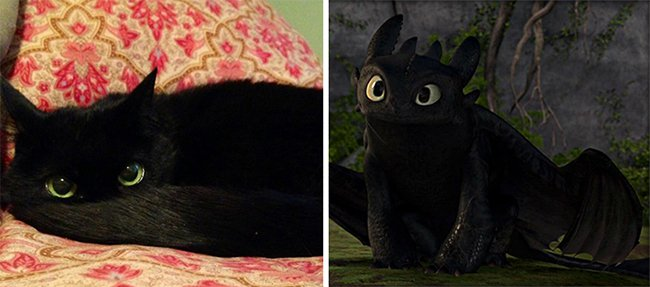 Real Life Cartoon Characters toothless