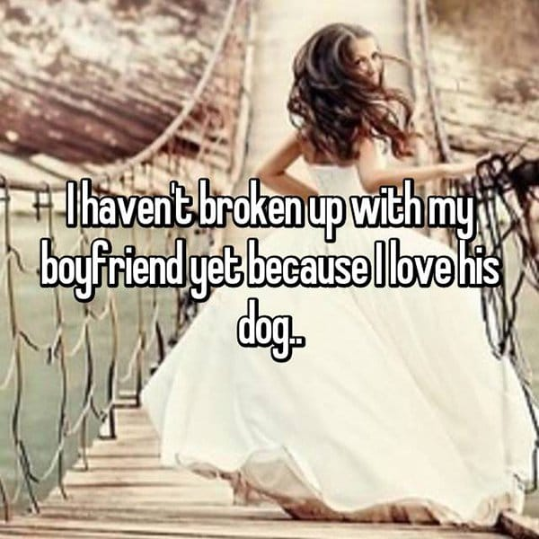 reasons waiting to break up love his dog