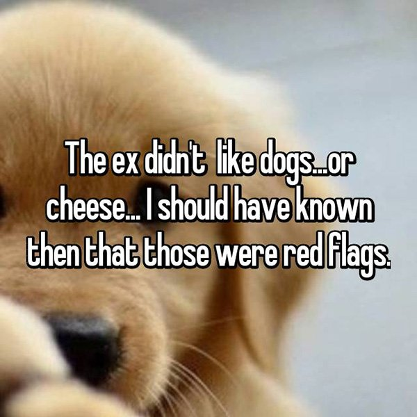 relationship red flags didnt like dogs or cheese