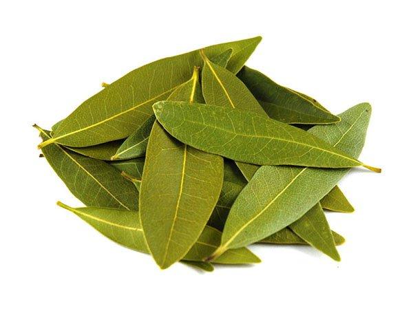 bay leaf pile