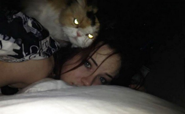evil cats girl bed
