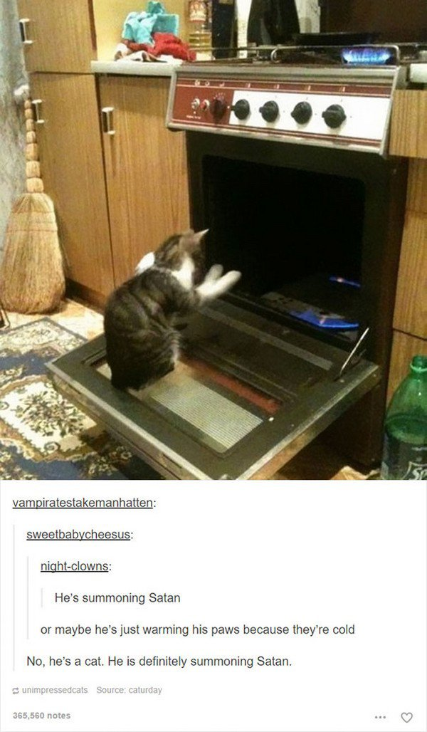 evil cats oven open
