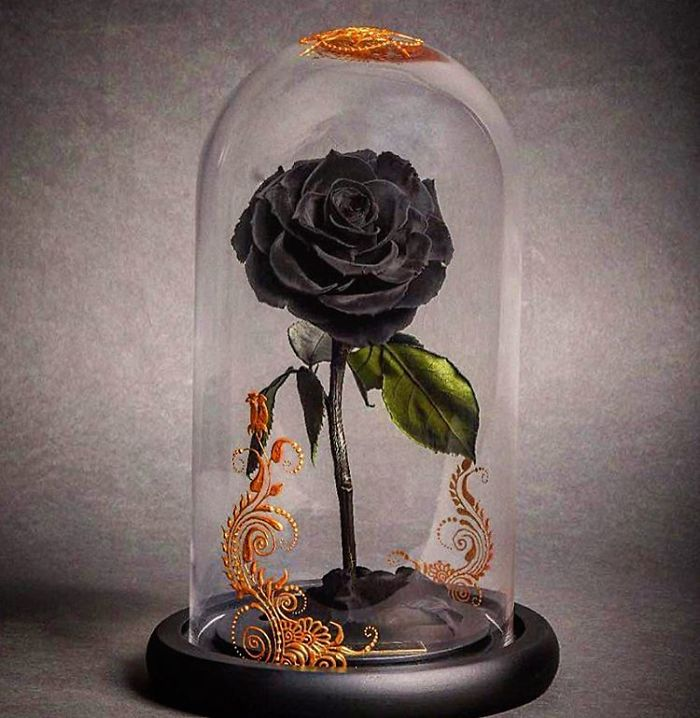 beautiful beauty and the beast style forever roses