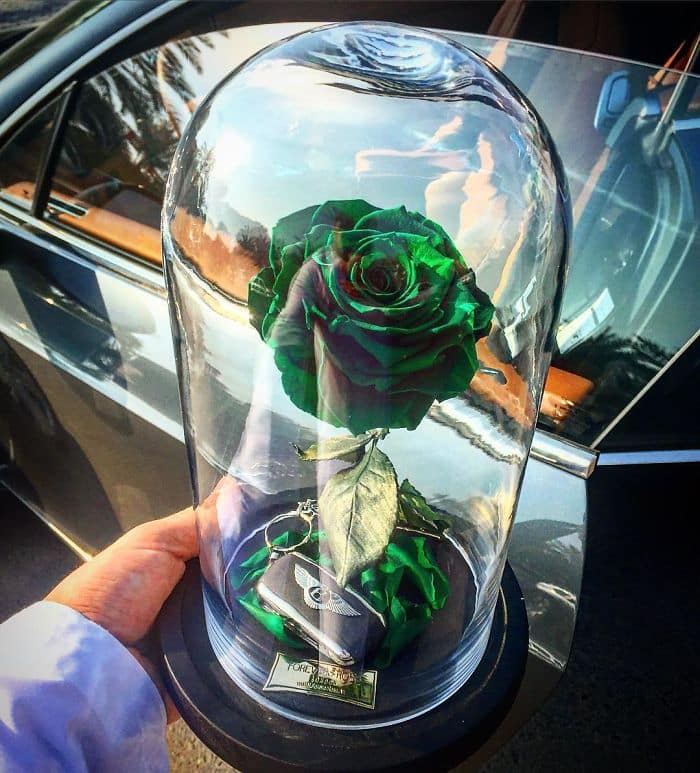 forever rose green singular rose